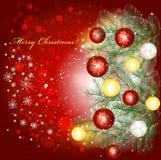 圣诞节背景和圣诞树分行 库存图片