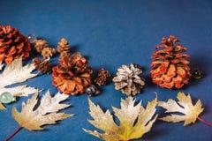 圣诞节背景射击,在蓝色背景的叶子 免版税图库摄影