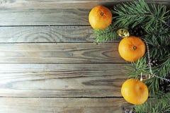 圣诞节背景用蜜桔 免版税库存图片