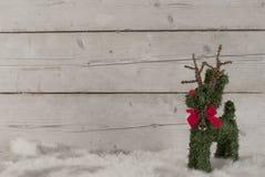 圣诞节背景,站立在羊皮的逗人喜爱的驯鹿, 免版税库存图片