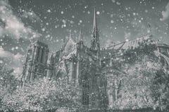 圣诞节背景:巴黎都市风景鸟瞰图与Notre Damm的在冬天日落在法国 库存图片