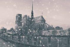圣诞节背景:巴黎都市风景鸟瞰图与Notre Damm的在冬天日落在法国 免版税库存图片
