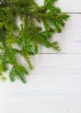 圣诞节背景绿化云杉的枝杈白色木 免版税库存照片