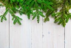 圣诞节背景绿化云杉的枝杈白色木 免版税库存图片