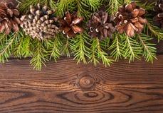 圣诞节背景 杉树分支和在木后面的锥体 免版税库存图片