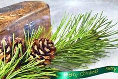 圣诞节节假日 在一个分支的一个杉木锥体与一条绿色丝带圣诞快乐 免版税库存照片