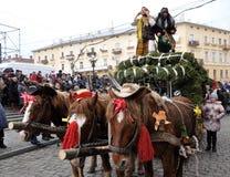 圣诞节节日Malanka Fest_39 免版税图库摄影