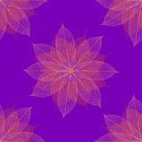 圣诞节花卉模式紫色无缝 库存照片