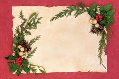 圣诞节花卉边界 免版税库存照片