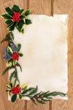 圣诞节花卉边界 库存照片