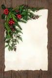圣诞节花卉边界 免版税库存图片