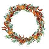 圣诞节花圈例证 问候的寒假装饰背景 库存例证