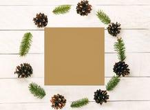 圣诞节花圈做了杉木锥体和小树枝firon白色 免版税库存照片