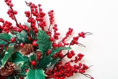 圣诞节花圈在白色背景和常青树隔绝的霍莉莓果 免版税库存照片