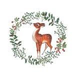 圣诞节花圈的水彩例证与鹿的 皇族释放例证