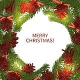 圣诞节花圈背景 库存照片