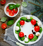 圣诞节花圈caprese沙拉 免版税图库摄影