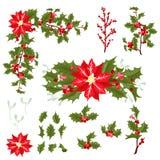 圣诞节莓果花传染媒介例证 图库摄影
