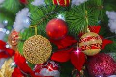 圣诞节蒴 库存照片