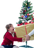 圣诞节表达式 库存照片