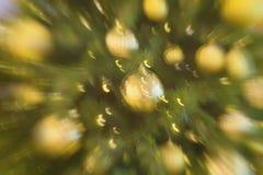 圣诞节被弄脏的假日背景 在树的被弄脏的圣诞节球装饰品,金黄光 选择聚焦 冬天 库存图片