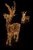 圣诞节被点燃的驯鹿 免版税库存图片