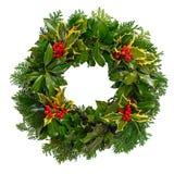 圣诞节被隔绝的霍莉花圈 免版税库存图片