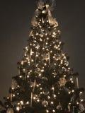 圣诞节裂片树1 库存照片