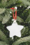 圣诞节装饰品球画框 库存照片