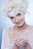 圣诞节装饰女王/王后雪 免版税库存图片
