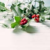 圣诞节装饰常青树开花问候一品红红色结构树 免版税库存照片