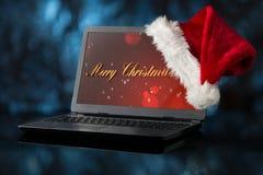圣诞节装饰常青树开花问候一品红红色结构树 库存照片
