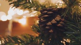 圣诞节装饰新年度 摘要被弄脏的Bokeh假日背景 眨眼睛诗歌选 圣诞节图象点燃更多我的投资组合结构树 影视素材