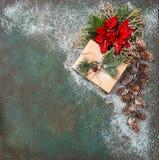 圣诞节装饰杉木分支红色花一品红雪 免版税图库摄影