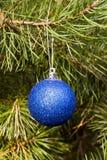 圣诞节装饰杉树 免版税库存照片