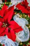 圣诞节装饰物经典之作 免版税库存图片