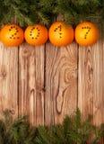 圣诞节装饰用桔子 免版税库存照片