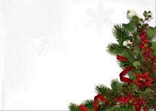 圣诞节装饰用红色莓果和一品红在白色 库存图片