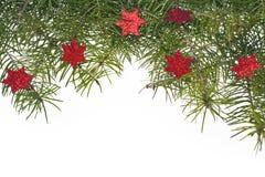圣诞节装饰背景云杉枝杈绿色星担任主角 库存照片