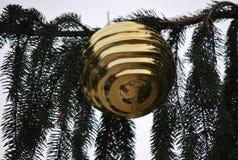 圣诞节装饰金黄结构树 库存照片