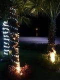 圣诞节装饰隔离白色 免版税库存照片