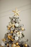 圣诞节装饰隔离白色 工作室 新年度 免版税库存照片