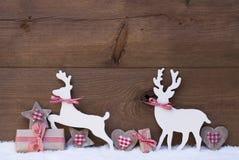 圣诞节装饰,在爱的驯鹿夫妇 图库摄影