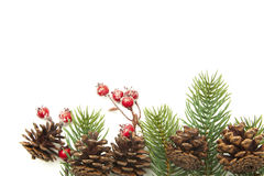 圣诞节装饰,在白色隔绝的红色莓果锥体冷杉枝杈 库存照片