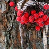 圣诞节装饰,在霜的莓果 图库摄影