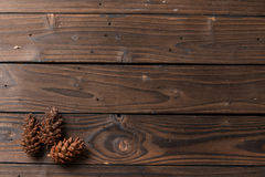 圣诞节装饰:杉木开花锥体 免版税库存图片