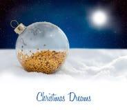 圣诞节装饰玻璃球在多雪的晚上 免版税图库摄影