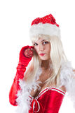 圣诞节装饰portrait圣诞老人夫人 库存照片