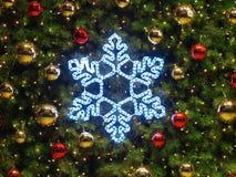 圣诞节详细资料结构树 免版税库存照片