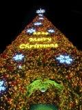 圣诞节详细资料结构树 库存图片